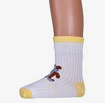 Детские носки девочка+мальчик сетка 8-12 лет (B1140/8-12) | 12 пар, фото 2