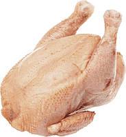Тушка курицы бройлерная домашняя