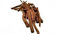 Корень Шлемника байкальского ( Radix Scutellaria baicalensis), 100 грамм
