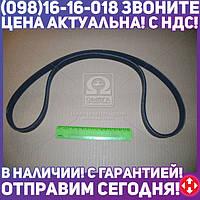 ⭐⭐⭐⭐⭐ Ремень 6РК-1220 ДВС 406 без ГУР (Дорожная Карта)  6РК1220-40