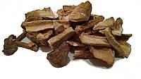 Корень Цикория обыкновенного 100 грамм (Cichorium intybus)