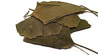 Листья Гинкго Билобы (Folium Ginkgo Biloba), 50 грамм