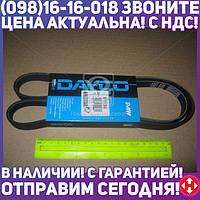 ⭐⭐⭐⭐⭐ Ремень поликлиновый (производство  DAYCO) МЕРСЕДЕС,A-КЛAСС,ВAНЕО, 5PK1263