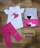 Комплект-двойка для девочек оптом, размеры 8-16 лет, Seagull, арт. CSQ-46060