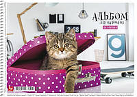 Альбом для рисования Star 20 л., на пружине Коты