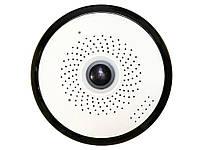 Панорамная WiFi камера Daytech для охраны