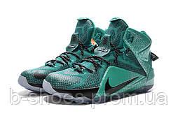 Мужские баскетбольные кроссовки Nike Lebron 12 (Turquoise)