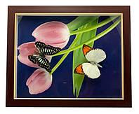 Картина с бабочкой