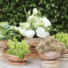 Флористические материалы, общее