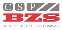 Новинка! Цементно-стружечные плиты (ЦСП) BZS.