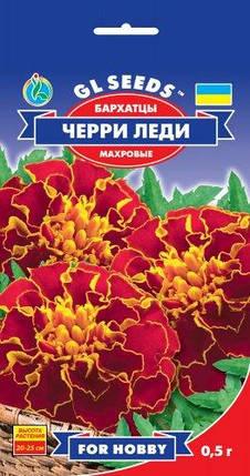 Бархатцы Черри Леди - 0.5 г - Семена цветов, фото 2