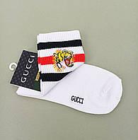Шкарпетки Gucci .