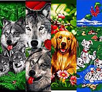 """Детские полотенца """"Животные"""", фото 1"""