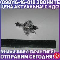 ⭐⭐⭐⭐⭐ Лампа накаливания H4 12V 100/90 WP43t-38 RALLY (производство  Philips)  12569RAC1