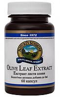 Экстракт Листьев Оливы (Olive Leaf Extract) 60 капс. - NSP