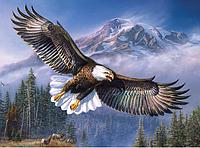 Алмазная вышивка 5D «Орел в полете» (50*40 см) полная выкладка, фото 1