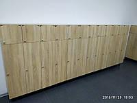 Шкаф детский для раздевалки на 5 секций. W25, фото 1