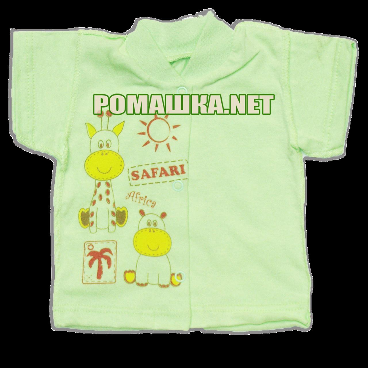 Детская кофточка р. 62 короткий рукав кнопки футболка для новорожденных малышей грудничков КУЛИР 3174 Зеленый
