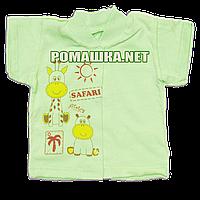 Детская кофточка р. 62 короткий рукав кнопки футболка для новорожденных малышей грудничков КУЛИР 3174 Зеленый, фото 1
