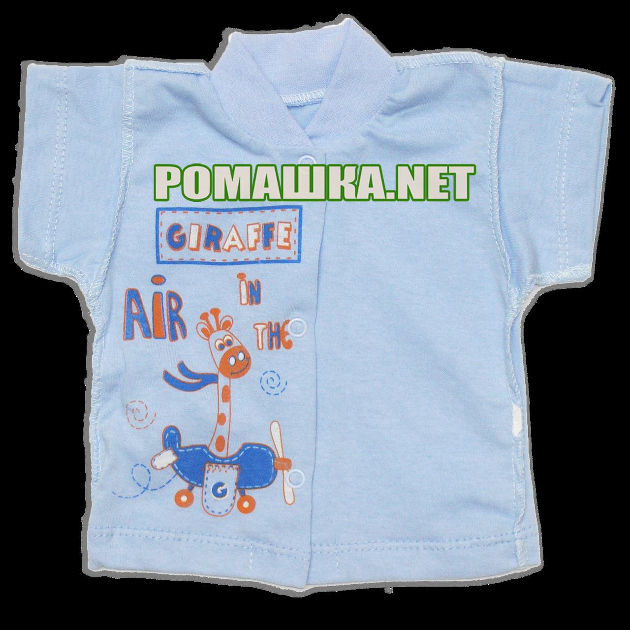 Детская кофточка р. 62 короткий рукав кнопки футболка для новорожденных малышей грудничков КУЛИР 3174 Голубой