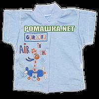 Детская кофточка р. 62 короткий рукав кнопки футболка для новорожденных малышей грудничков КУЛИР 3174 Голубой, фото 1