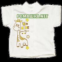 Детская кофточка р. 56 короткий рукав кнопки футболка для новорожденных малышей грудничков КУЛИР 3174 Бежевый