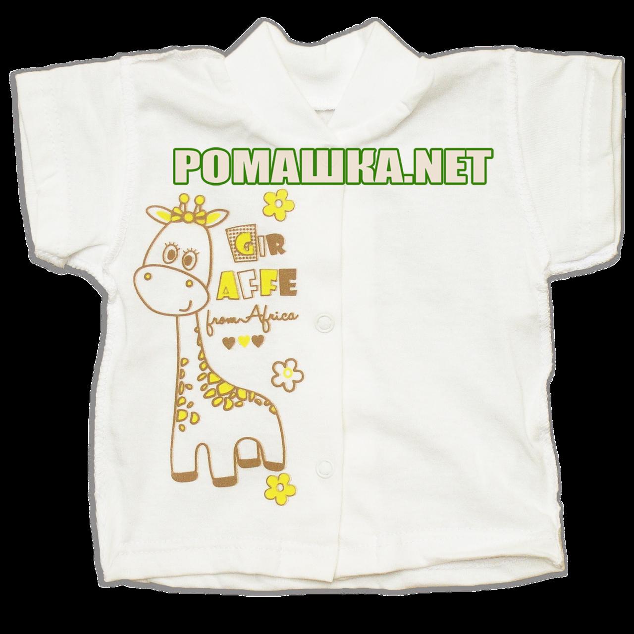 Детская кофточка р. 62 короткий рукав кнопки футболка для новорожденных малышей грудничков КУЛИР 3174 Бежевый