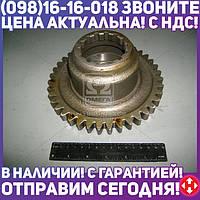 Шестерня привода Z=39 (производство  МЗШ)  70-1601086-Б