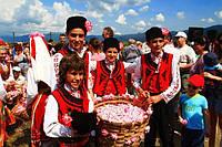 Начало розовой компании 2015 в Долине Роз, Болгария!