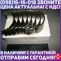 ⭐⭐⭐⭐⭐ Вкладыши шатунные Р2 Д 65 АО20-1 (производство  ЗПС, г.Тамбов)  А23.01-81-65сбБ1