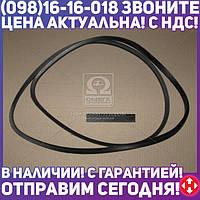 ⭐⭐⭐⭐⭐ Ремень В(Б)-2650 (производство  ЯРТ)  В(Б)-2650