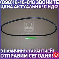 ⭐⭐⭐⭐⭐ Ремень С(В)-1900 (производство  ЯРТ)  С(В)-1900