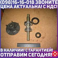 ⭐⭐⭐⭐⭐ Ремкомплект насоса водяного СМД 14 (производство  Украина)  СМД-14-1307000