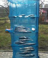 Сушилка для рыбы, грибов, сухофруктов 45*45*100 на 5 полок