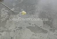Пестик для Лилии и Тюльпана, Белый, фото 1