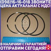 ⭐⭐⭐⭐⭐ Кольца поршневые Д 260 Поршень Комплект MAR-MOT (производство  Польша)  260-1004060-Б