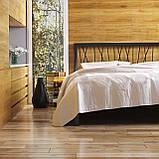 Кровать металлическая Бергамо 1 / Bergamo 1 односпальная 90 (Метакам) , фото 2