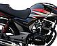 Мотоцикл Musstang Region МТ200, фото 9