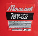 Мотокультиватор Могилев МТ-62 + МАСЛО 1л. Культиватор садовый Могилев, фото 3