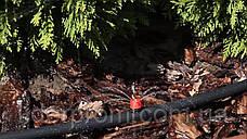 """Набор для капельного полива малины, кустов, деревьев """"Многолетка 100"""" (443 предмета), фото 2"""
