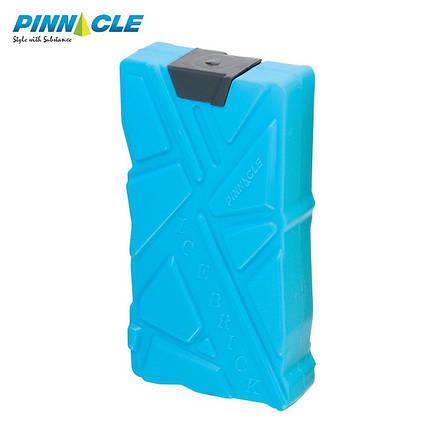 Аккумулятор температуры 1х600, Pinnacle, фото 2