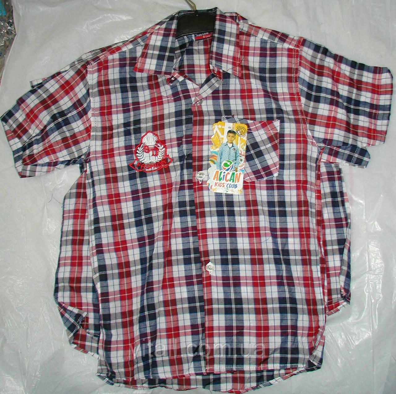 Рубашка в клетку от 5 до 8 лет синяя с  ярко красным