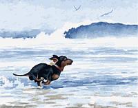 "Картина по номерам. Brushme "" Такса бежит от морской волны "" GX25132"