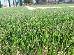 Укладка монофиламентной синтетической травы  17