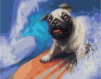 Картина по номерам на холсте Мопс на сёрфе, GX24298