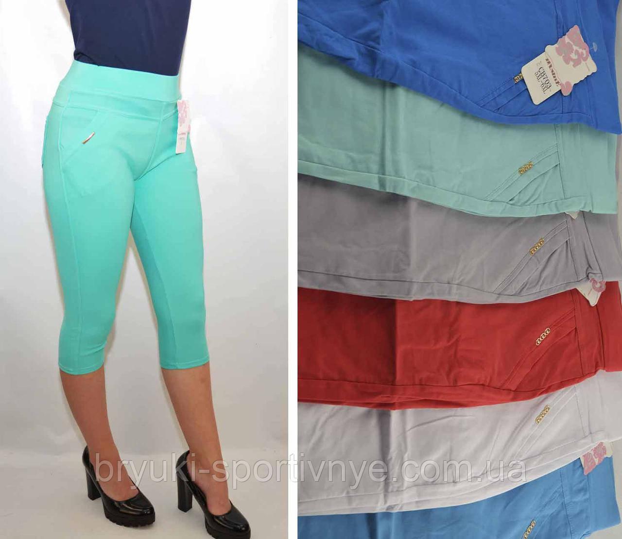 Бриджі жіночі стрейч у літніх кольорах від L до 6XL (Польща) - бавовна