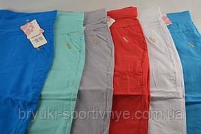 Бриджі жіночі стрейч у літніх кольорах від L до 6XL (Польща) - бавовна, фото 3