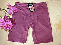 Труси, панталони жіночі Стяжка з трикотажу, розмір 48-54, фото 1