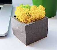 Бетонное кашпо Cube темно серое (6,5 х 5,5 см)