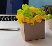Бетонное кашпо Block серое (8,5 х 8,5 х 7,5 см)
